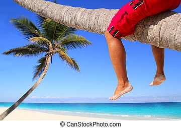 Caribbean inclined palm tree beach tourist legs