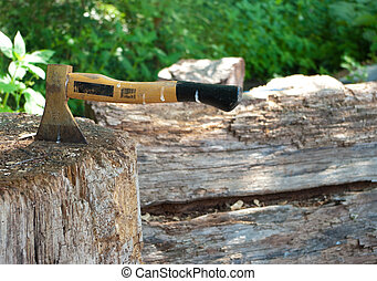 ax - Small ax used for splitting wood