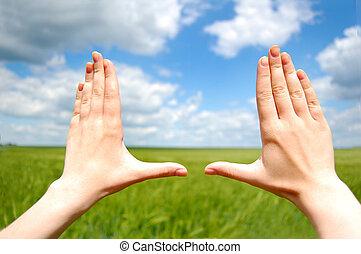 Women hands make frame over green wheat field