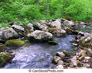 Baxters Hollow State Natural Area - Stream flows through a...