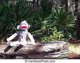 Sock Monkey - Picture of a sock monkey sitting on a bench