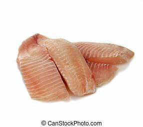 tilapia fillet -  raw tilapia fillets on a white background