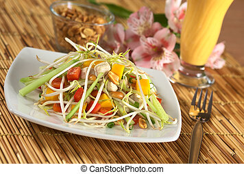 Fresh Asian salad with chicken, mango, cucumber, bean sprouts, red bell pepper and peanuts with mango juice in the back (Selective Focus, Focus on the top of the pile)