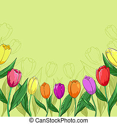 Flowers tulips on a green