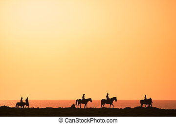 Silhouettes of the horse riders on the coast.