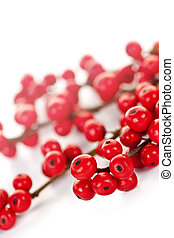 Red Christmas berries