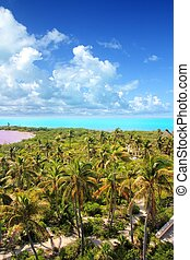 aerial view Contoy tropical caribbean island Mexico palm...