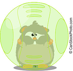 Hamster in ball - Cute hamster playing in its ball