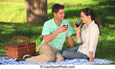 Attractive couple drinking red wine during a picnic