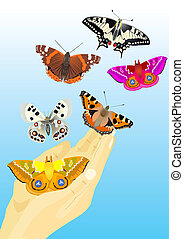 To freedom - Multicolored butterflies flying out of human...