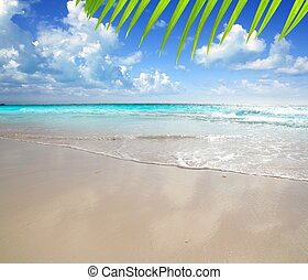 caribbean morning light beach wet sand reflection Tulum...