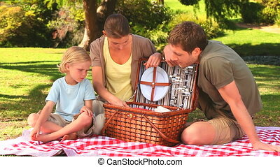 Family preparing to have a picnic on the grass in the park