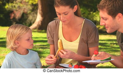 Attractive family eating fruits on the grass in the park