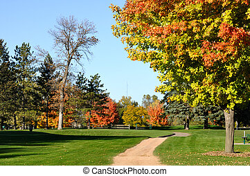 Colorful Leaves on Maple Trees - Golf Cart Path and Colorful...