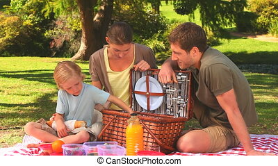 Family having a picnic - Child taking fruit from the picnic...