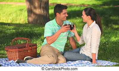 Cute couple drinking red wine sitting under a tree in the...