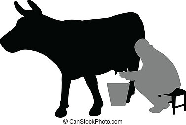milhing a cow - man milking a cow - vector