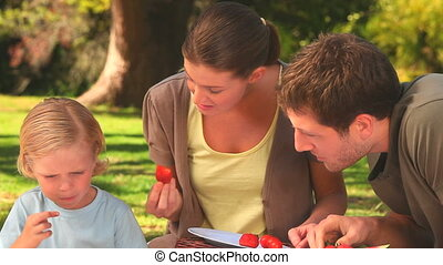 Happy family having a picnic - Young parents with their...