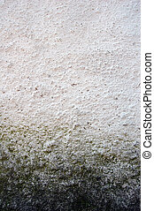 Mould at wall Background photo