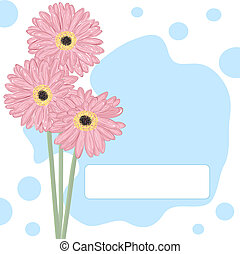 Gerberas. Vector greeting card.