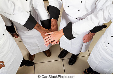 profesional, Chef, trabajo en equipo