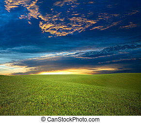 Green field - An image of blue sky and green field