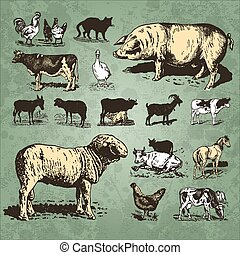 farm animals vintage set (vector) - set of retro farm animal...