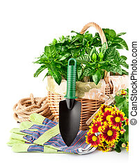garden equipment with flowers and green plants
