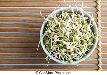 Bowl of Beansprouts Overhead - Overhead shot of a bowl of...