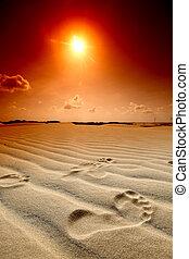 desert footprint - footprint on desert sand