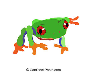 Green frog - Tropical green  frog on a white background