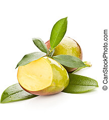Mango - photo of tropical mango fruit with green leaves on...