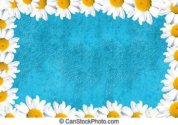 blue background with daisies - turquoise blue background...