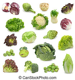 cabbage and green vegetable collection isolated on white...