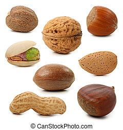 Nuts collection isolated on white background