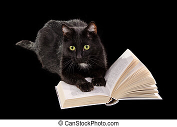 Black cat reading a book on black background - Black cat...