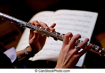 flute - a musician playing flute