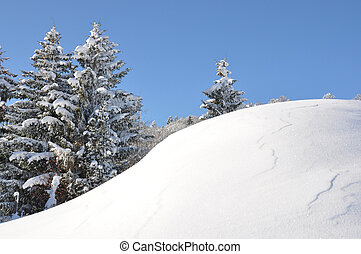 alpien, landschap