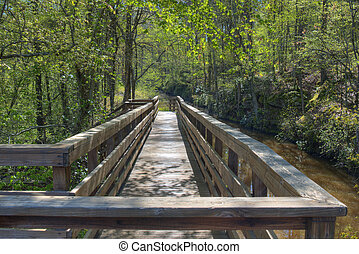 Wooden Walkway - A wooden walkway along a creek out in the...