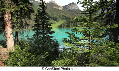 Emerald Lake - Pristine Emerald Lake, Yoho National Park,...