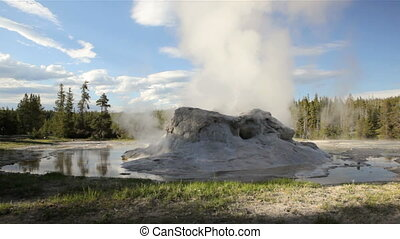 Grotto Geyser 1 - Eruption from Grotto Geyser, Yellowstone...