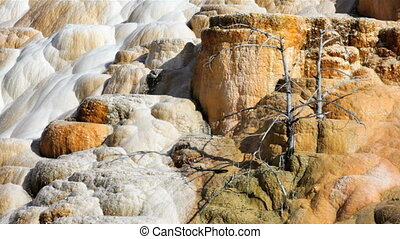 Palette Spring 1 - Zoom in of Palette Spring in the Mammoth...