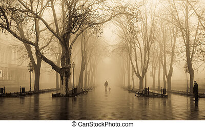 Fog alley and people. Photo in old yellow style.