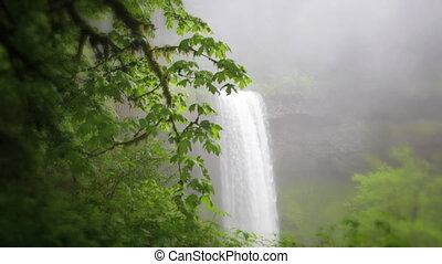 South Falls Waterfall - South Falls, Silver Falls State...