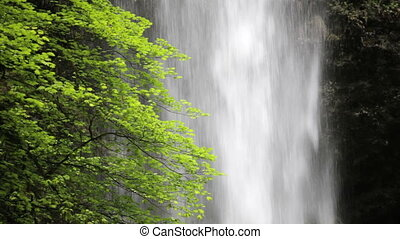 Upper North Falls Waterfall - Upper North Falls, Silver...