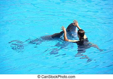 delfin, weisen
