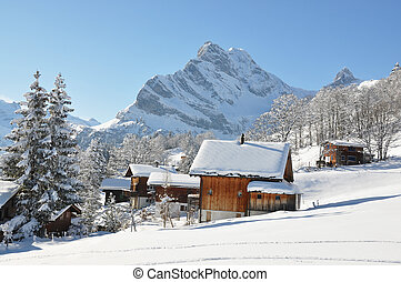 Swiss holiday cottages