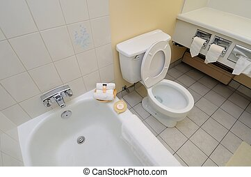 Toilet bowl and bathtub