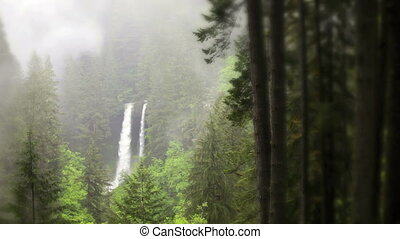 North Falls Waterfall - North Falls, Silver Falls State...
