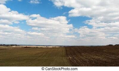 spring landscape, field, timelapse